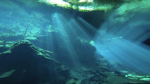 cenote3.jpg