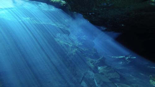 cenote4.jpg