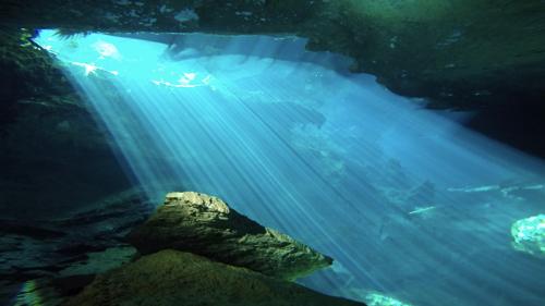cenote5.jpg