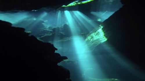 cenote6.jpg