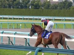 返し馬:メジャーエンブレム
