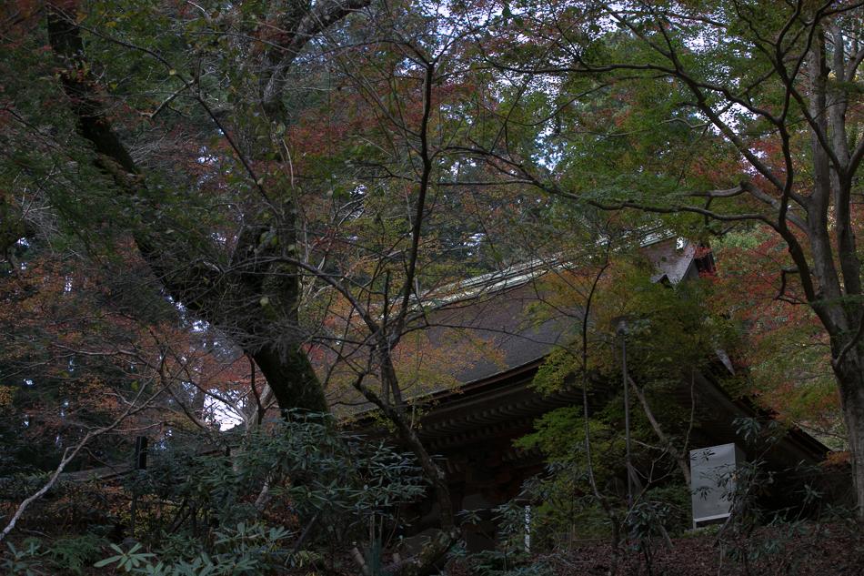 室生寺-17