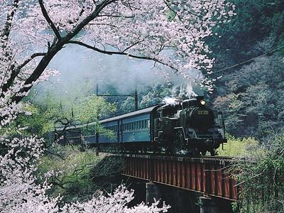 008Oigawa Railway (大井川鐡道) [Shizuoka]