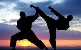 karatesekaitaikai798249849.jpg