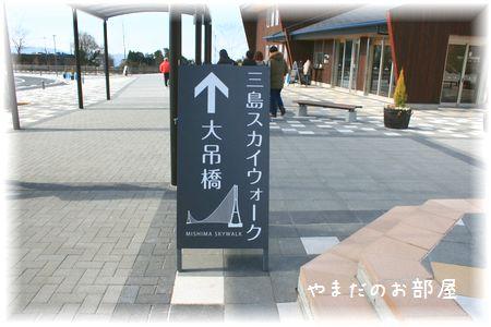 三島スカイウォーク③