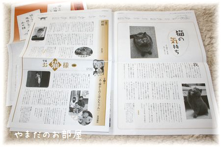ねこ新聞③