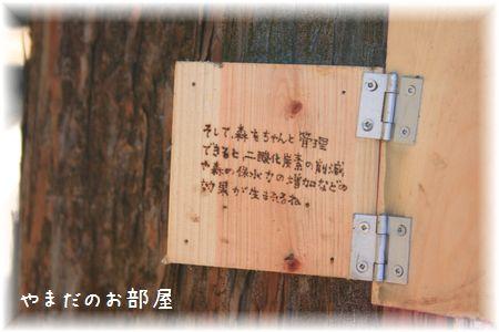 三島スカイウォーク38