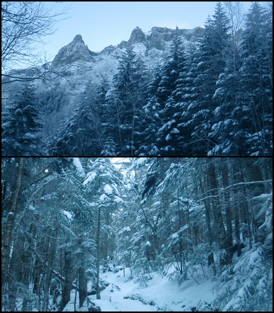 023 雪景色