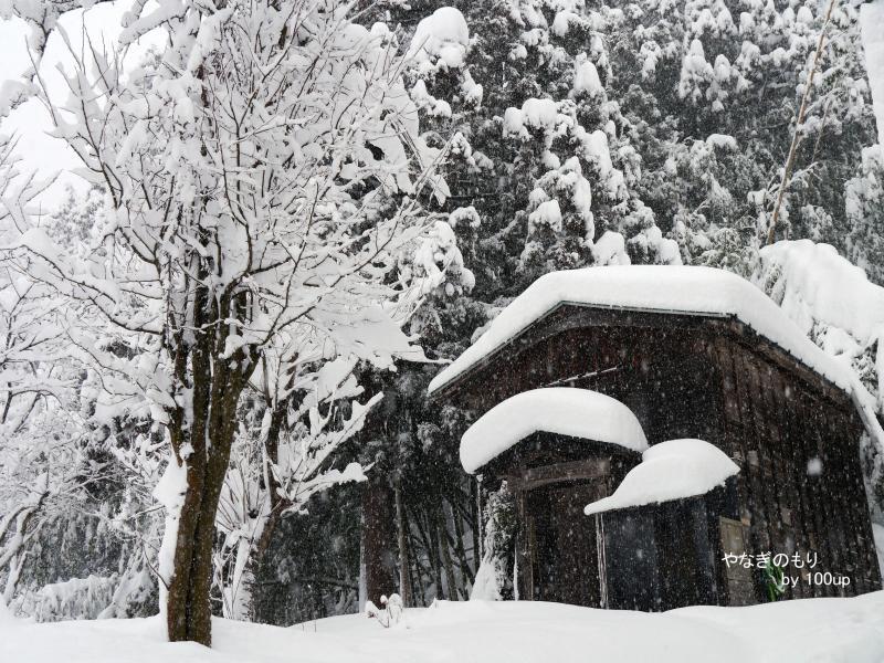 2016年2月6日新潟県