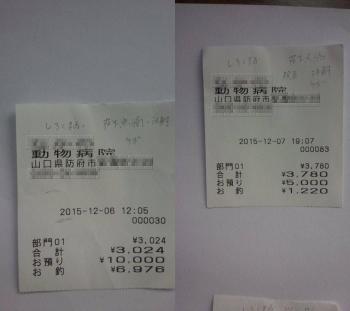15-12-003.jpg