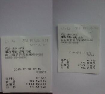 15-12-008.jpg