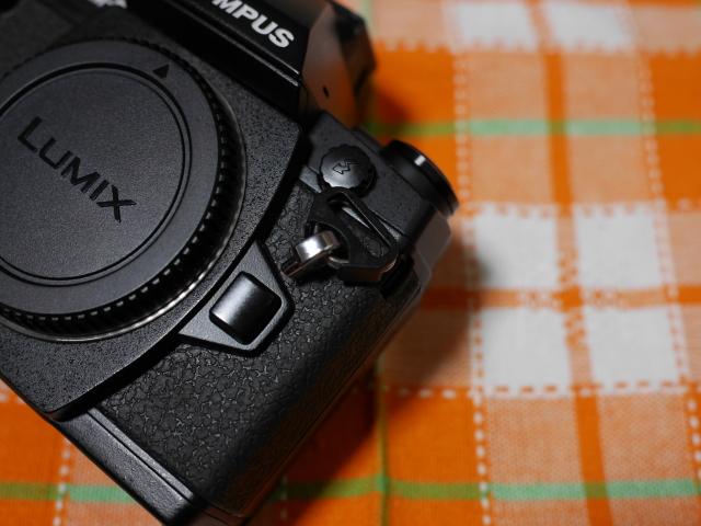 P1650372.jpg