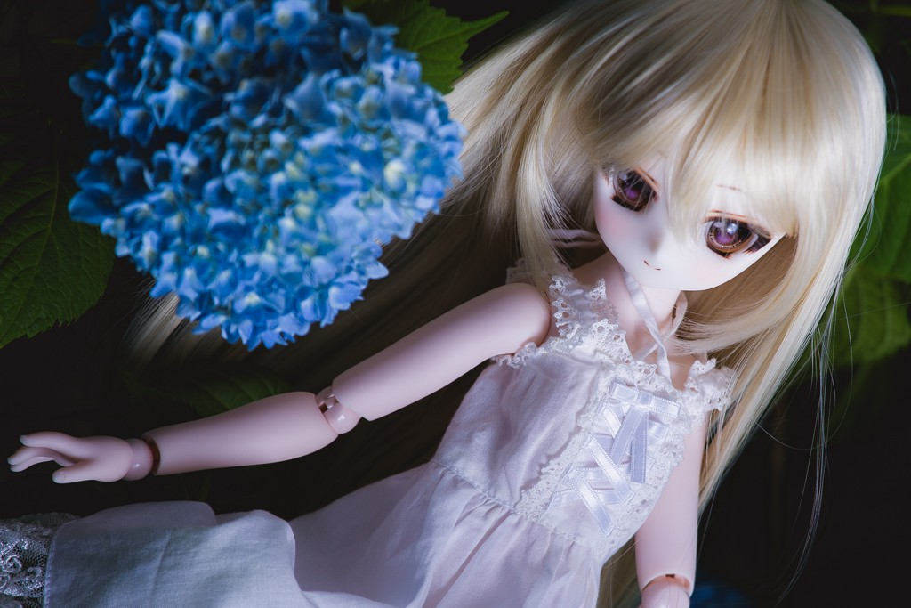 151221_12_s.jpg