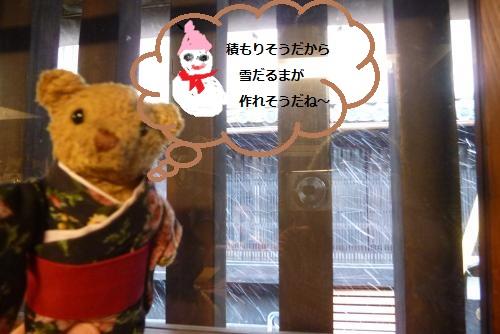 黒江便り  2016 1月 (べァー)