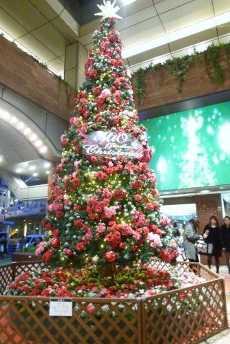 街で見かけたクリスマス