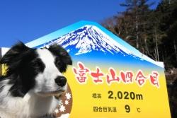 201512月富士山1-1