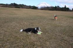 201512月富士山1-3