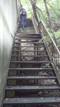 三頭山口駅の屋上への階段