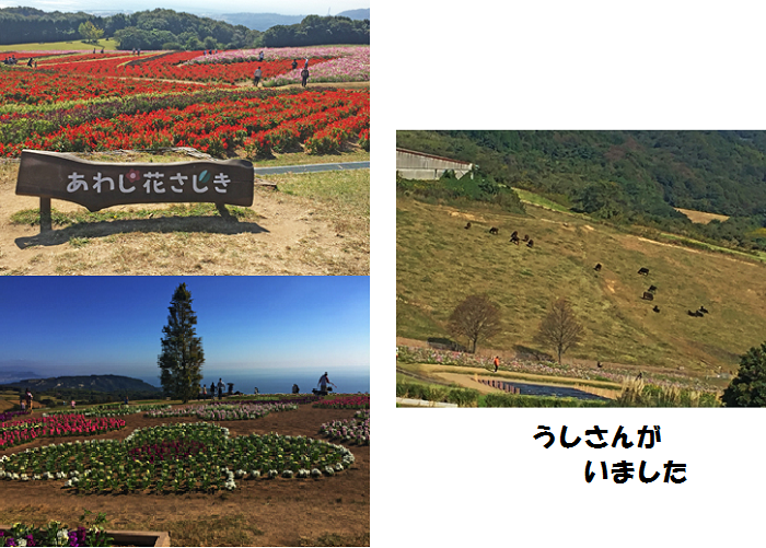 20151027210820c1a.png