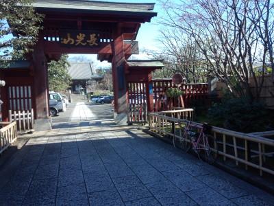 photo_derosa_yokohama_2016hatumoude_11_2016_0109.jpg