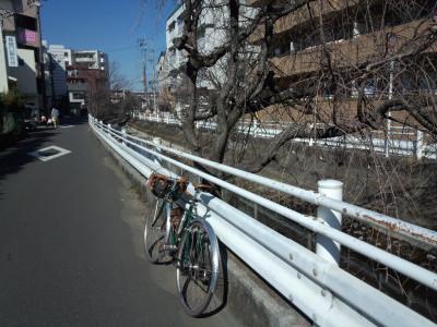 photo_randner_nakaharakaidoukosugijinnya_3_2016_0211.jpg