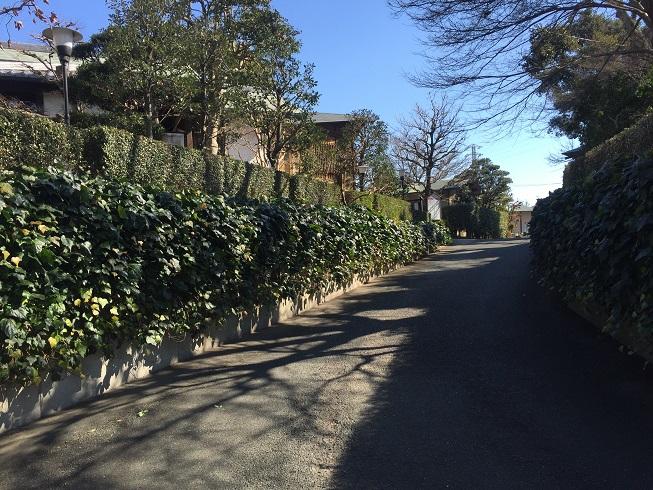 tenhiro2.jpg