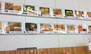 柑橘類の種類