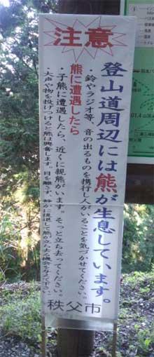 20150722_mitsumine_008.jpg