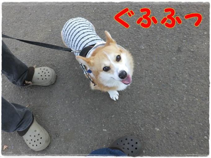 12-31DSCF4616.jpg