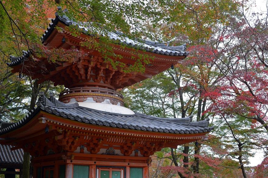 牛滝山 大威徳寺の紅葉 (1)