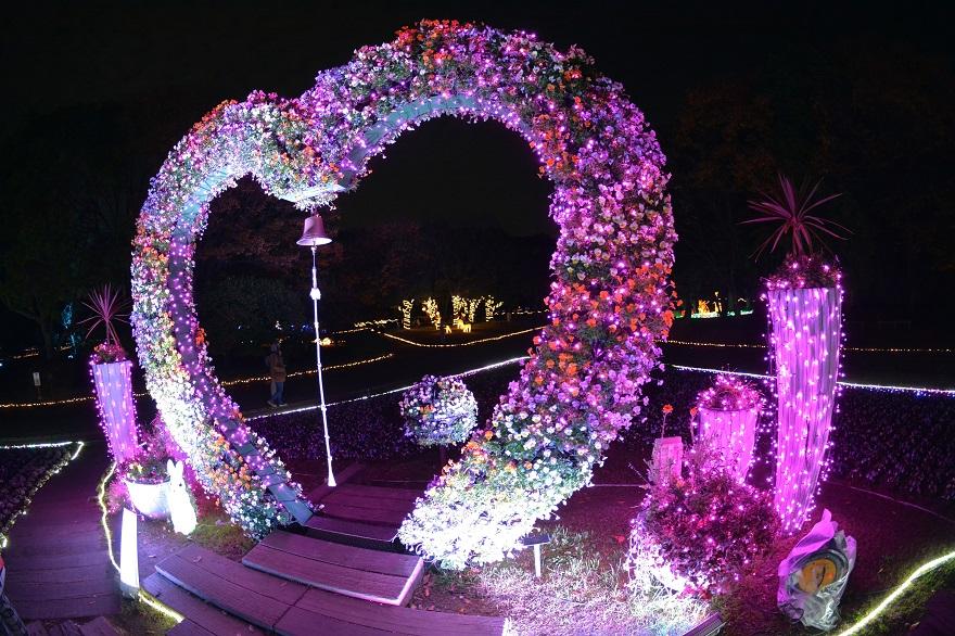 長居植物園ガーデンイルミネーション (1)