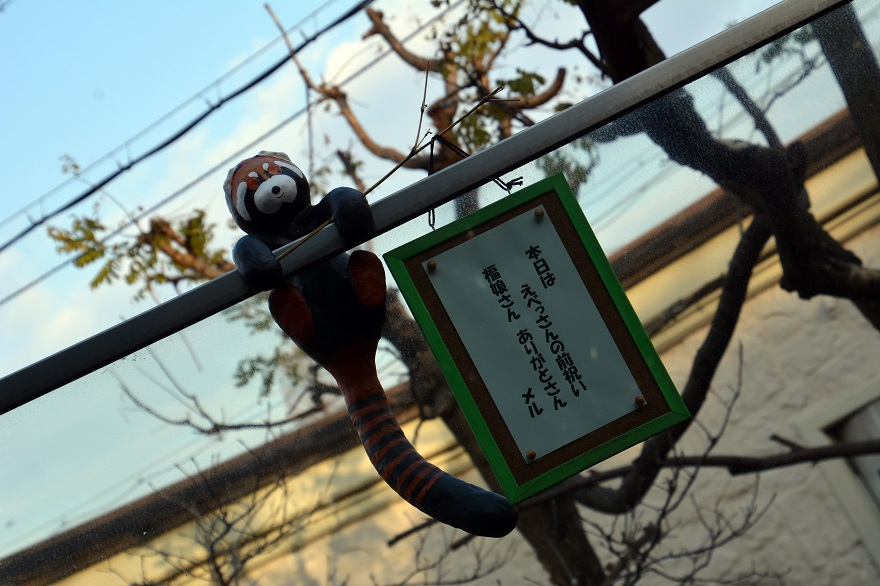 レッサーパンダ (02)