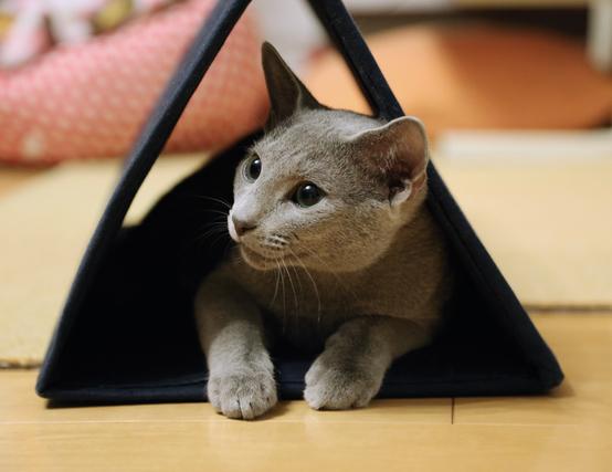 三角トンネル中
