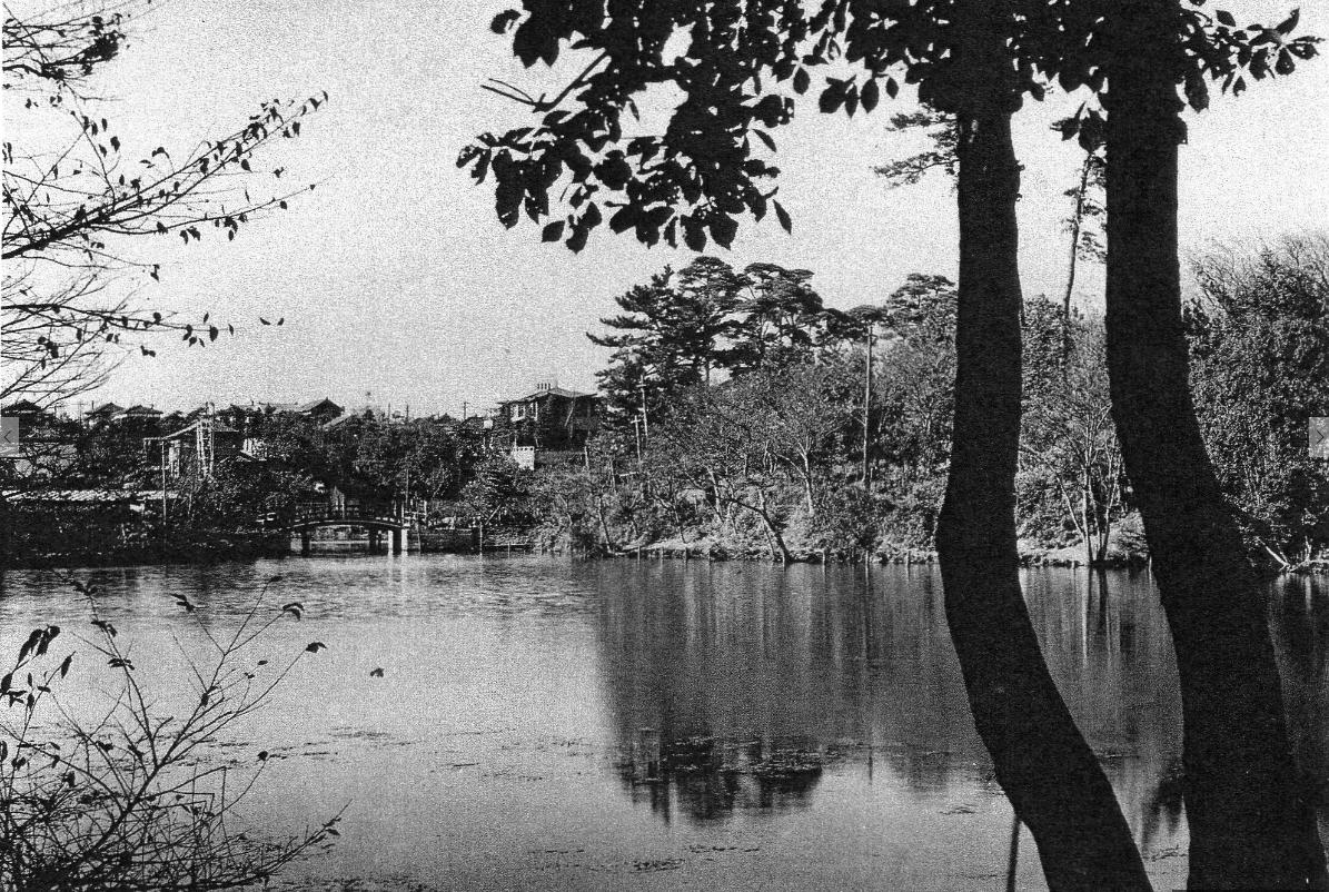 桜山 弁天島