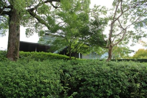 0031:平等院ミュージアム鳳翔館 丘の下から本館を見る