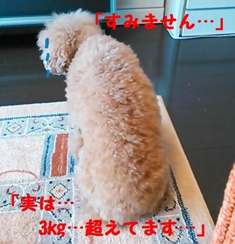 NCM_3835(2).jpg