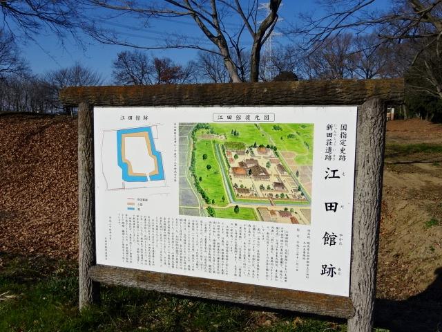 DSC01468.jpg