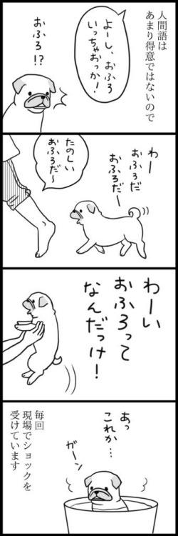 nariyuki-menglish-twitter.jpg