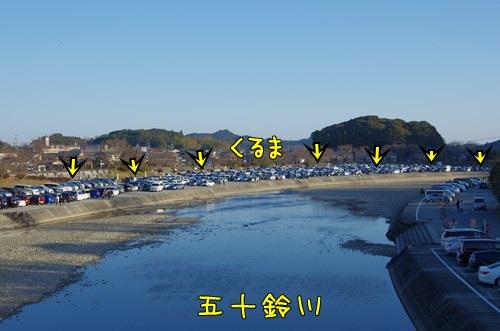 RK52G0896_Y.jpg