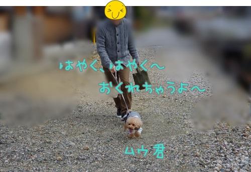RK52G0927_Y.jpg