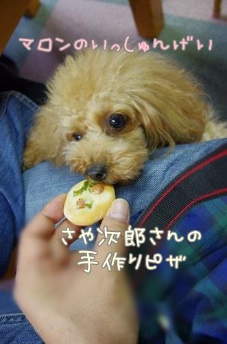 RK52G0946_Y.jpg