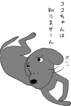 知らん顔の犬