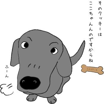 鼻息が荒い犬
