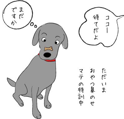特訓中の犬