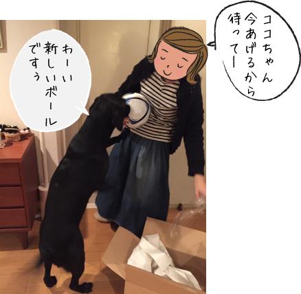 ボールと犬02