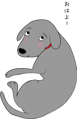 振り返る犬