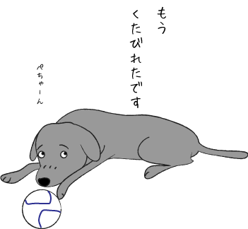 遊び疲れた犬