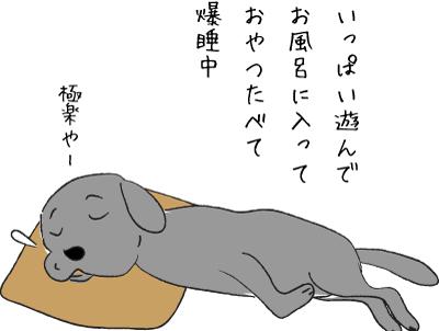 熟睡中の犬