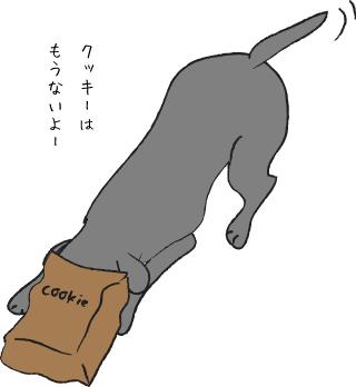 袋に顔を突っ込む犬