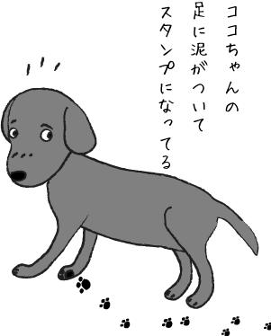 汚れた足の犬